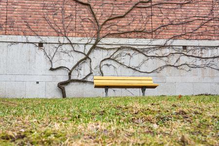 Yellow garden bench.