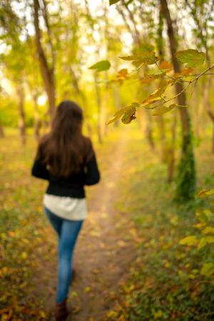Mädchen in einer Parkherbstlandschaft, weg von der Kamera, auf einem Fußweg durch eine Herbstwaldlandschaft. Ganzkörperaufnahme, Fokus liegt auf einem Ast mit gelben Blättern