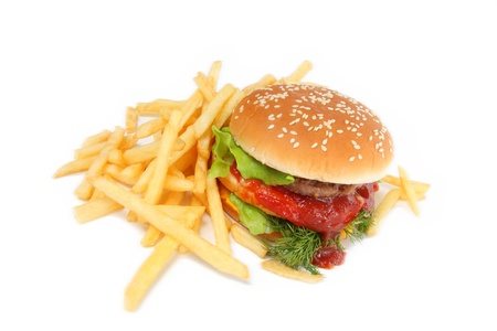 cheeseburger with fries: sandwich and french fries