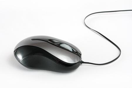 souris: Souris d'ordinateur sur blanc Banque d'images
