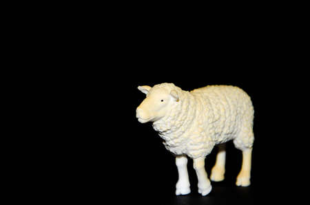 Plastic toy sheep on a black background. Realistic toy Copy Space