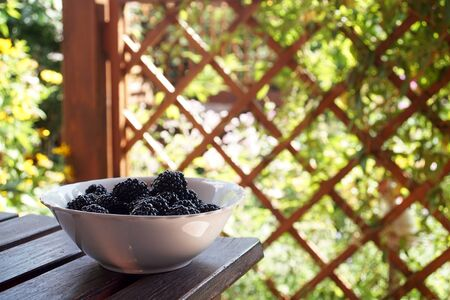 Freshly picked blackberry fruit on the terrace on a sunny day