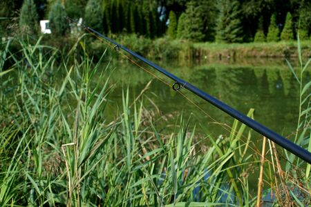 fishing on the pond in summer - rods and water