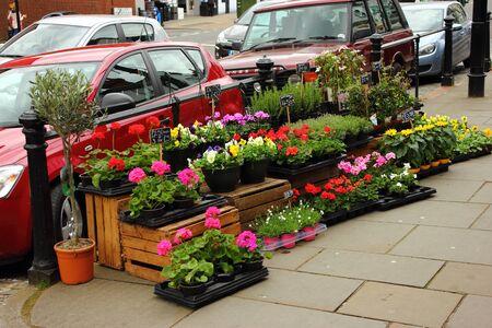 Dorking, Surrey, Verenigd Koninkrijk, 21 april - 2017: Het tonen van een bloem winkelt vrij opgeheven bloemvertoning op de bestrating voor iedereen te zien
