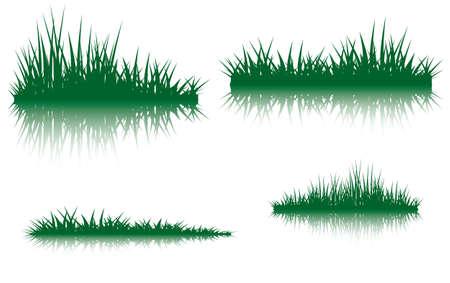 反射と草のシルエット。実施の図はあなたの組成のため、ダミーとして使用されました。