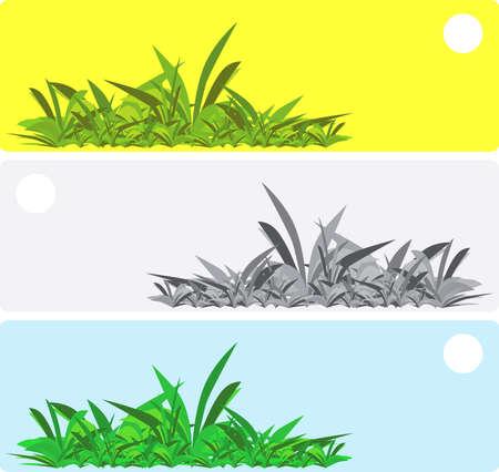 llustration showing several options for summer scenery Illustration