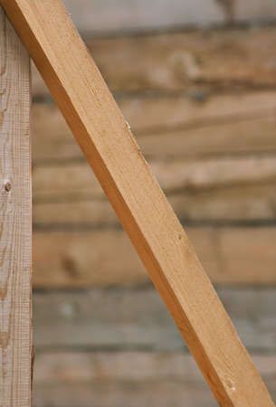 Background, which consists of wood planks. Shallow DOF.