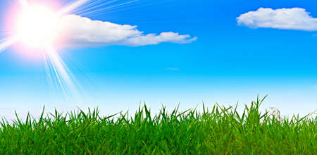 grass and blue sky during the summer in good weather