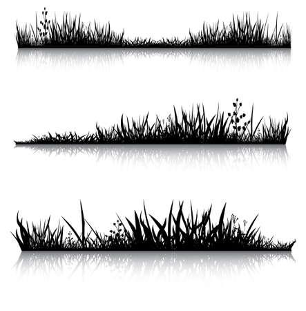 illustration herbe: Silhouettes d'herbe avec la r�flexion. Illustration r�alis�e a �t� utilis�e comme les mannequins pour votre composition. Illustration