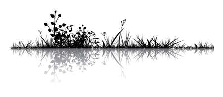 Grass with the reflection. Illustration conducted was used as the dummies for your composition.