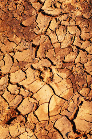 Clay soil is covered with cracks due to prolonged drought. Stock Photo - 9428892