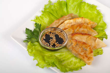 Japanese traditional gyoza on a white plate