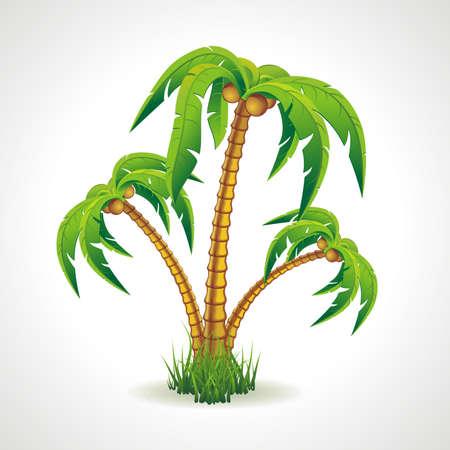 Vector illustratie van de palmbomen breedte kokosnoten Stock Illustratie