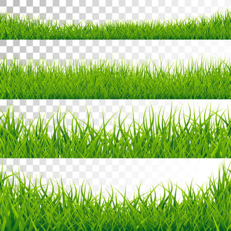 Green Grass Borders Set Vector Illustration on Transparent Background.