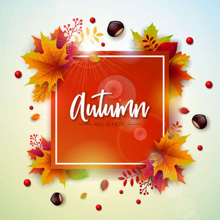 Autumn Illustration with Colorful Falling Leaves, Chestnut and Lettering on White Background. Autumnal Vector Design for Greeting Card, Banner, Flyer, Invitation, Brochure or Promotional Poster 矢量图像