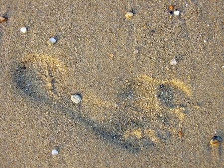 Single footprint on the golden beach sand  photo