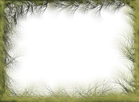 Abstract green branches spring frame       photo