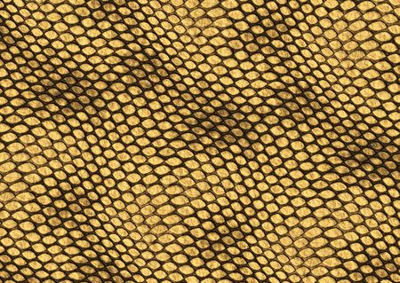 Realistic reptile skin illustration, decorative background texture illustration