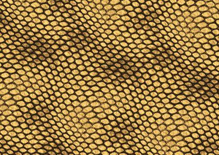Realistische Reptilien Haut Abbildung dekorativ Hintergrundtextur  Standard-Bild - 6614247