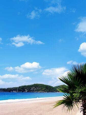 oludeniz: Oludeniz beach in turkey, palm tree, sunshine, sand and waves
