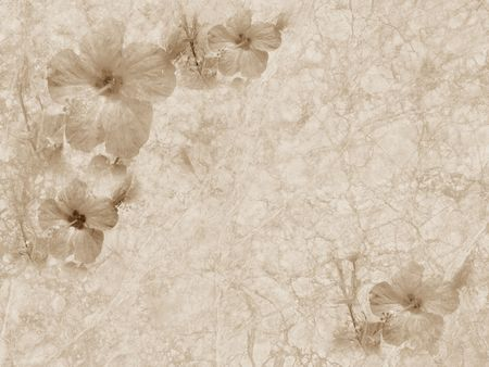 Old style grunge background with hibiscus flower, copy space
