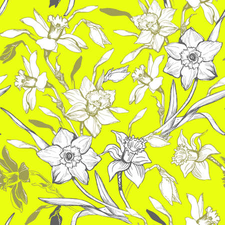 White elegant hand drawn flowers Narcissus, Daffodils. Natural vector realistic seamless sketch on bright yellow background. Natural floral botanical vector realistic seamless sketch on bright yellow background.