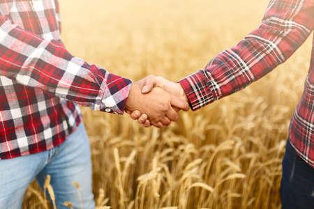Uścisk dłoni na polu pszenicy, zgoda rolników. Koncepcja umowy biznesowej agronom rolnictwa
