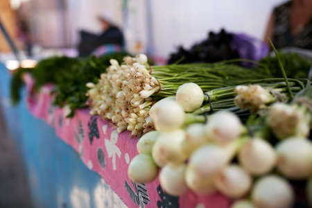 Display of fresh green and white onions and garlic. Fruits and vegetables at a farmers summer market. Stock Photo