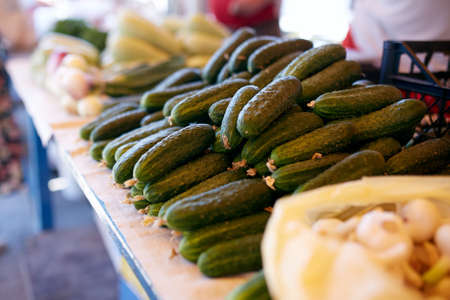 Fresh organic vegetables and fruits on sale at the local farmers summer market outdoors. Healthy organic food concept. Cucumber, garlic and zucchini. Stock Photo
