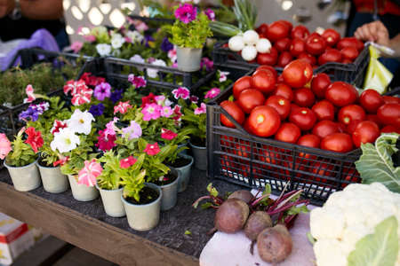 Fresh organic vegetables and fruits on sale at the local farmers summer market outdoors. Healthy organic food concept. Madagascar periwinkle flowers in pots on sale.