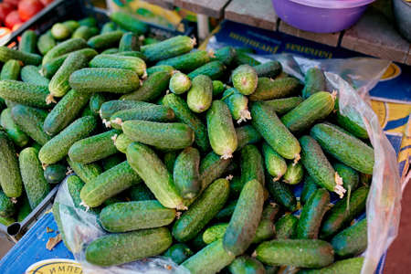 Cucumber. Fresh organic vegetables on sale at the local farmers summer market outdoors. Healthy organic food concept.
