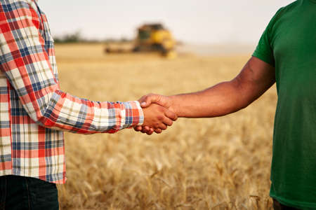 Farmer and agronomist shaking hands standing in wheat field after agreement. Agriculture business contract concept. Combine harvester driver and rancher negotiate on harvesting season. Handshake Stockfoto