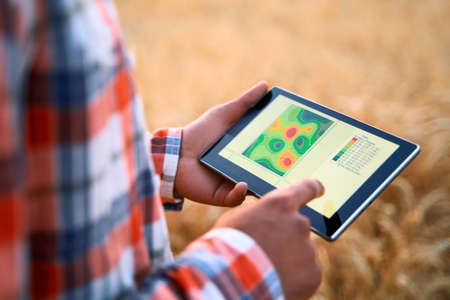 Precision farming. Farmer hands hold tablet using online data management software, differential fertilizer application maps. Agronomist works with touch screen to control, analyse agriculture business