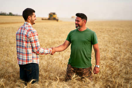 Farmer and agronomist shaking hands in wheat field after agreement. Agriculture business contract concept. Corporate farmer and landlord rancher negotiate with handshake. Combine harvesters harvest.