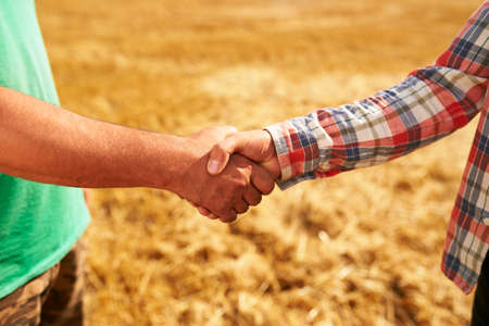 Farmer and agronomist shaking hands standing in a wheat field after agreement. Agriculture business contract concept. Combine harvester driver and rancher handshake after harvesting. Negotiations.