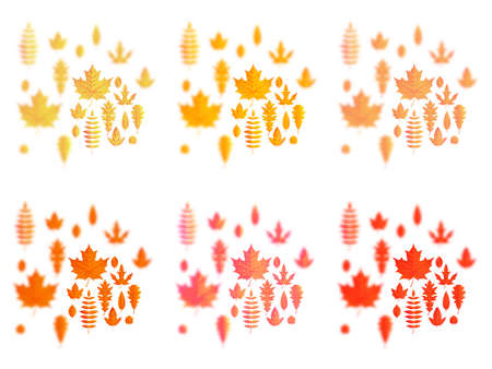 Set of autumn leaves or fall foliage icons. Maple, oak or birch and rowan tree leaf. Falling poplar, beech or elm and aspen autumn leaves for seasonal holiday greeting card design. Ilustração