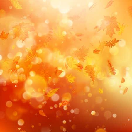 Jesienne tło z naturalnymi liśćmi i jasnym światłem słonecznym. Plik wektorowy EPS 10 Ilustracje wektorowe