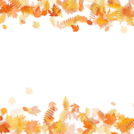 Autumn template with golden maple and oak leaves. EPS 10 vector file Illustration