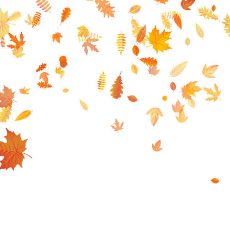Autumn background with golden maple, oak and others leaves. EPS 10 vector file