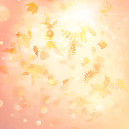 Autumn background with leaves. Back to school template. EPS 10 vector file