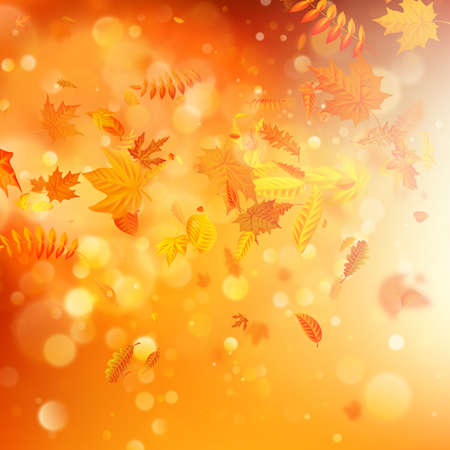 Autumn background with natural leaves and bright sunlight. EPS 10 vector file