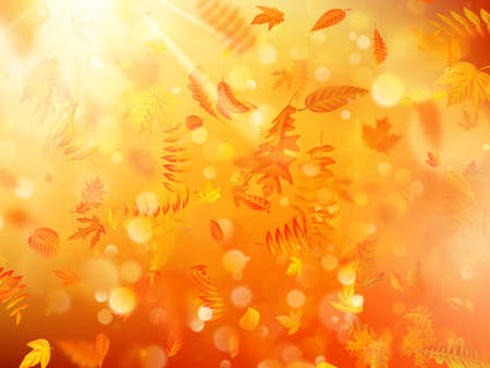 Autumn background with natural leaves and bright sunlight. EPS 10 vector file Vectores