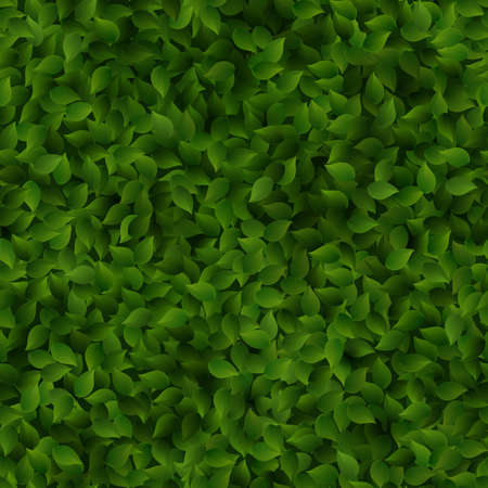 Seamless green leaves pattern spring or summer fresh background. EPS 10 vector file included