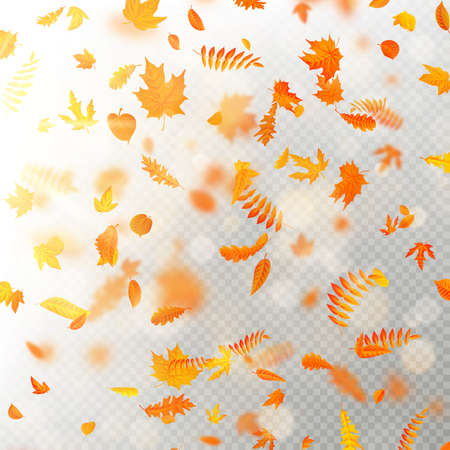 Effect of autumn falling leaves layer with shallow DOF blur. Autumnal foliage fall template. Warm color. EPS 10 vector file