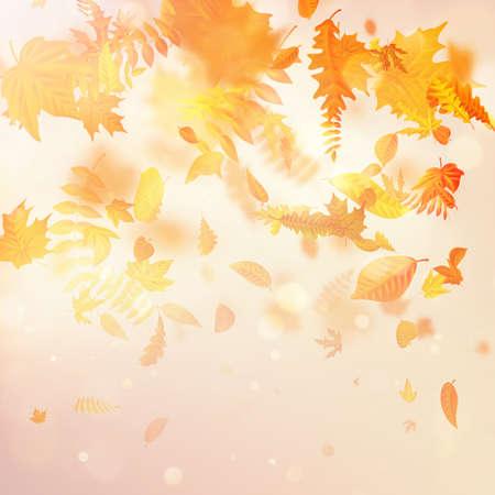 Jesienne upadek liści i liść topoli pływające w rozmycie ruchu wiatru. Plik wektorowy EPS 10
