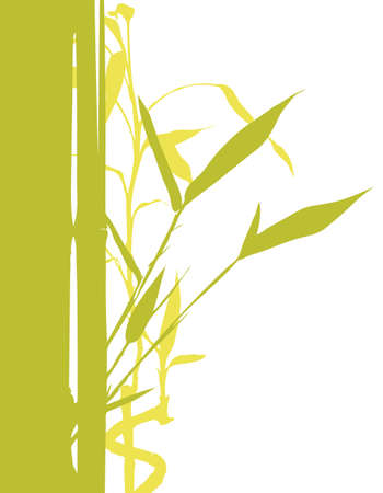 fengshui: illustration of bamboo tree silhouette on white background Illustration
