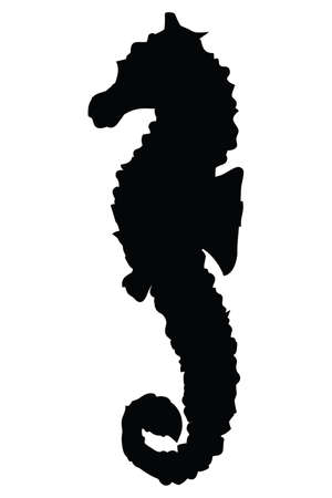 illustration of a seahorse silhouette on white background Иллюстрация
