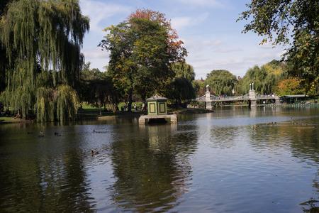 Pond in Bosotn public garden swan boats