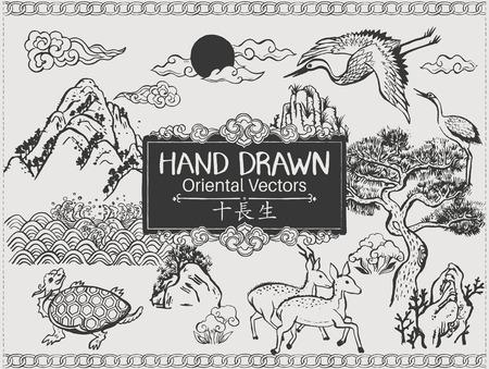 schildkröte: Set Hand gezeichnete orientalischen Elementen. - Die zehn traditionellen Symbole der Langlebigkeit. Bürsten. Vektor-Illustration.