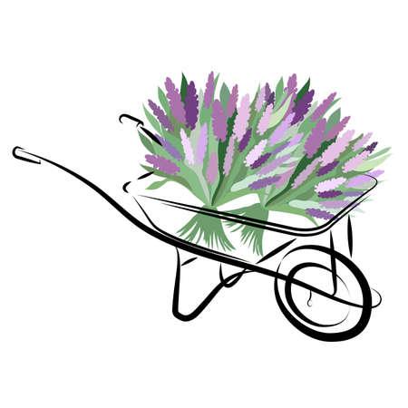 A wheelbarrow with bouquets of lilacs. Spring theme. For a summer residence, a garden and a vegetable garden.